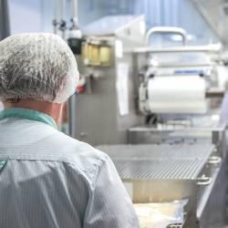 Lebensmittelhygiene Verordnung EG 852/2004